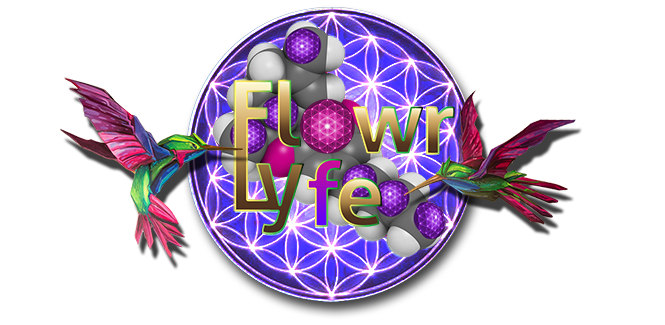 Flowr Of Lyfe - Eugene, OR - BUTTONS